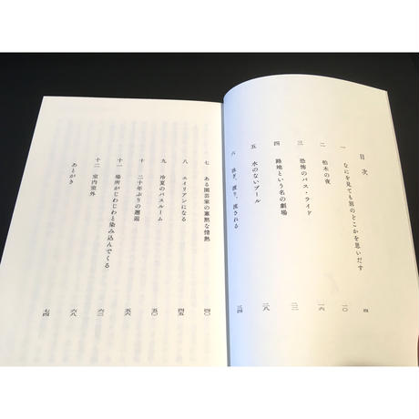 大竹昭子『大竹昭子 短文集――室内室外 しつないしつがい』〈よろずや灯光舎〉
