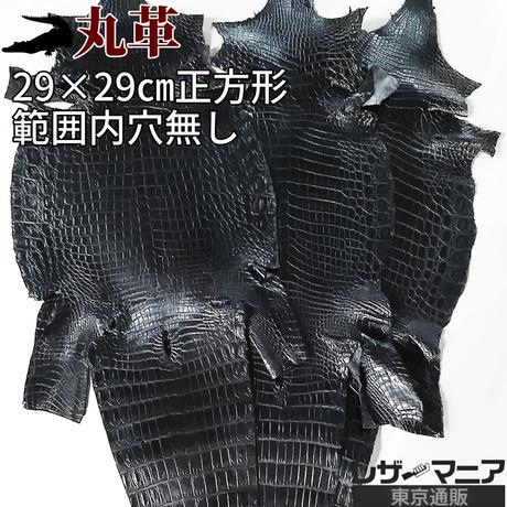 クロコダイル革【一匹・29×29㎝穴無し】黒/半ツヤ/wj129