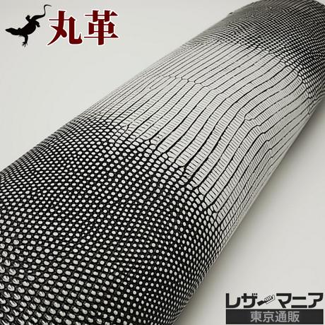 トカゲ革【最大幅30cm前後】バニラ/ツヤ弱/背割/ 0496