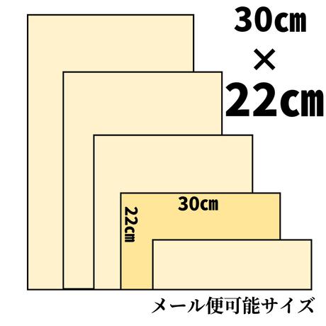 東京ヌメ【30×22㎝】自分で染める革/フラワー柄/スキ加工費込/ 0042