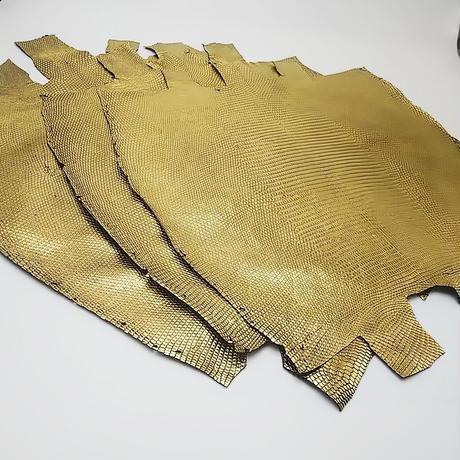 トカゲ革【最大幅30cm前後】ゴールド箔/ ツヤ強/背割/t801