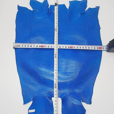 トカゲ革【最大幅31cm】ブルー/ツヤ強/ 背割/0475