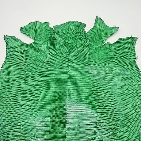 トカゲ革【最大幅33cm】グリーン/ツヤ強/ 背割/0476