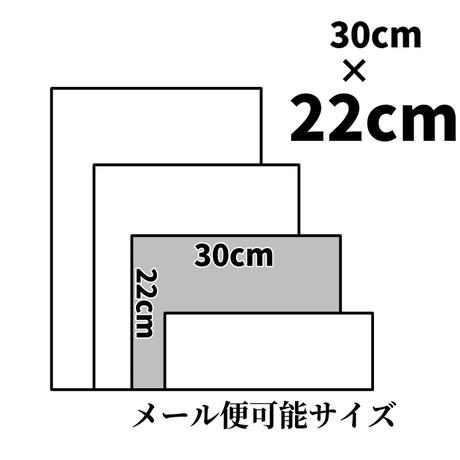 ルガト/ディープグレー【30×22㎝】スキ加工費込/ RG02