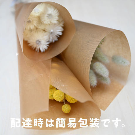 【C】ドライフラワー花材・Cセット