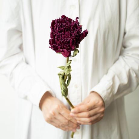 ドライフラワー「シャクヤク 紫&淡ピンク」