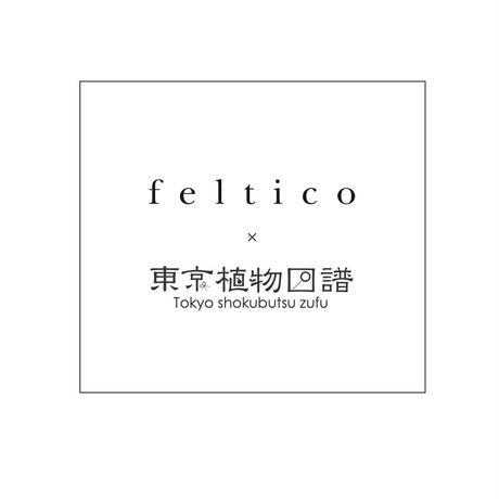 feltico×東京植物図譜「フランネルフラワーのブローチとスモークツリー」