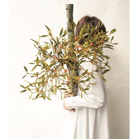 東京植物図譜 from instagram