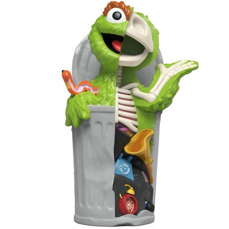XXRAY Plus  Sesame Street Anatomical Oscar by Jason Freeny
