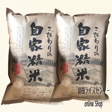 愛知県産 コシヒカリ 白米 20㎏ 選べる 白米 無洗米