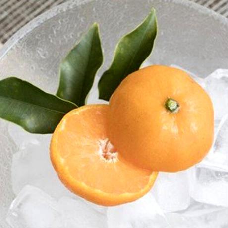 冷凍みきゃんセット みきゃん盛り(温州みかん10~12個、ミックス3個)