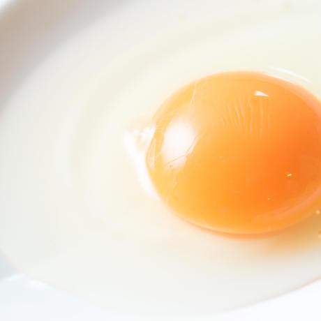 土佐ジロー有精卵10個【冷蔵】