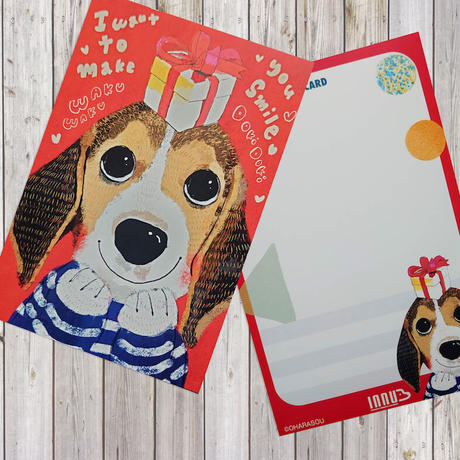 ポストカード  beagle(ビークル)