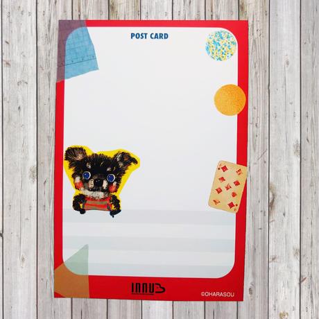 ポストカード Black-chihuahua(チワワ)