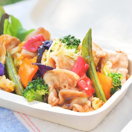 【砂丘の家 レイガーデンカフェ】鳥取県産ポークのしょうが焼き丼