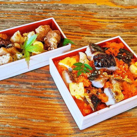 【更科】特製塩鯖重弁当(副菜付き)