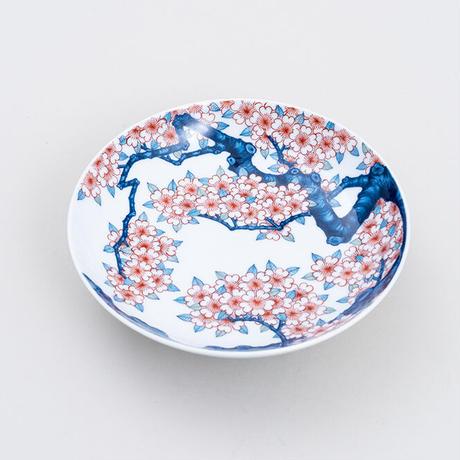 色鍋島桜樹文五寸高台鉢