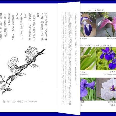 ネット通販『花の文化立国日本 お花の歳時記』