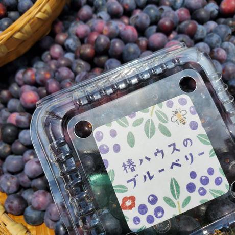 【完熟朝摘み/クール便直送】フレッシュブルーベリー500グラム