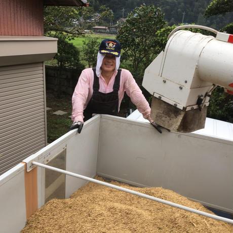 コシヒカリ【美人米】白米5kg 千葉県神崎町産