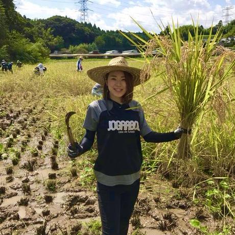 令和2年新米【美人米】玄米5kg 千葉県神崎町産