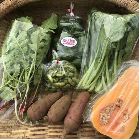 9月27日引取日。津久井地域内引き取り限定コース①1回だけのお野菜セット。相模原市緑区で引き取り可能な方。