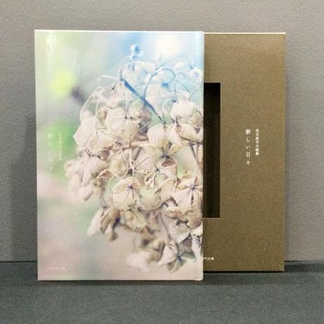 芝木好子小説集「新しい日々」