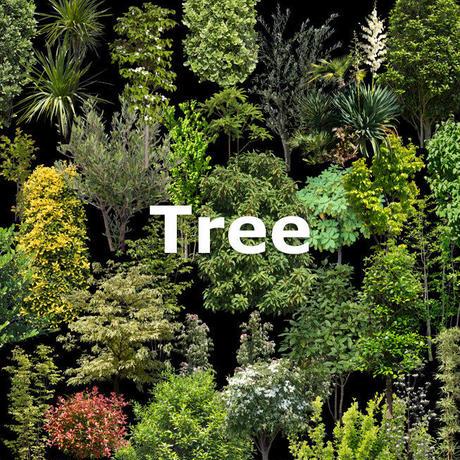 ガーデン庭木素材 庭樹木  34個セット  G30_11