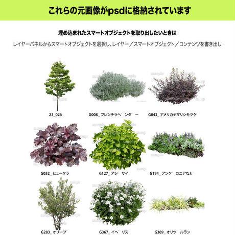 ガーデン植栽パースセット  GP003_04
