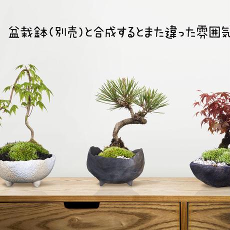 盆栽鉢3個セット 切り抜きデータ bonsai-hachi