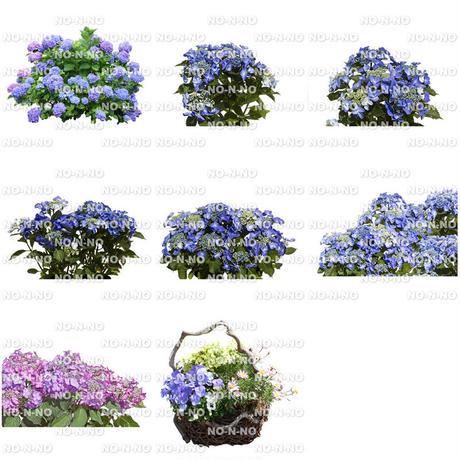 花の切り抜き素材 8個セット F_019