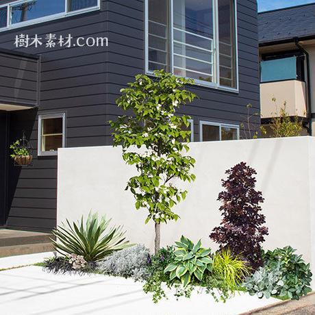 ガーデン庭木素材 シルバー系  31個セット  G30_01