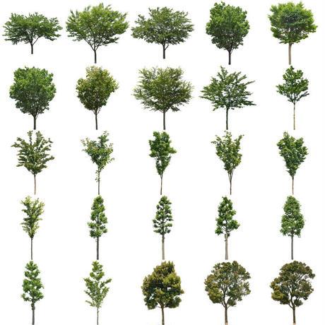 無料樹木素材セット 89個 free_trees_set03
