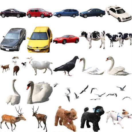 無料 - 車・動物・窓  セット 86個 animal-car-window