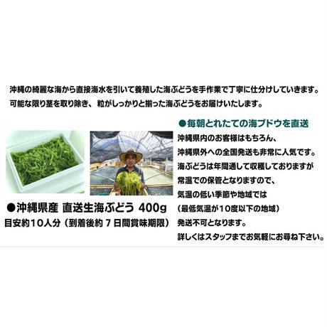 沖縄県産 直送生海ぶどう 400ℊ(送料込)