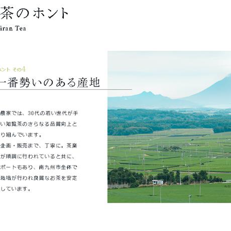 ぷれみあむT-Bagシリーズ 4種セット