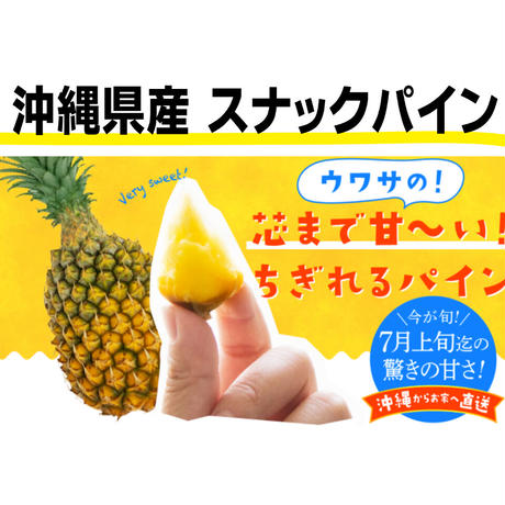 沖縄県産 ちぎって食べるスナックパイン 2㎏※4個入目安(送料込)