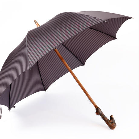 MARIO TALARICO 傘⑳ キウイの木の根