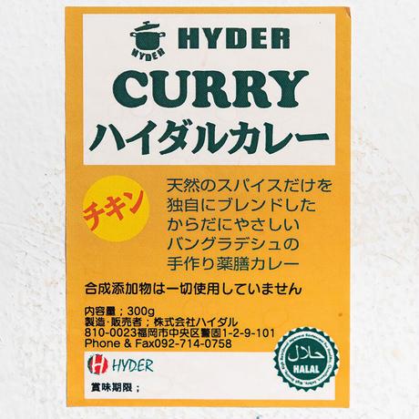 薬膳チキンカレー  10食セット