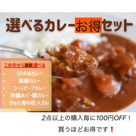 選べる沖縄ご当地カレー選べるセット 2点目以降は100円OFF