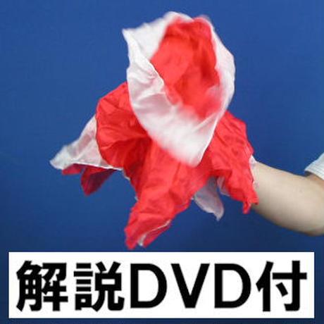 ファンテンブライダル (解説DVD付)