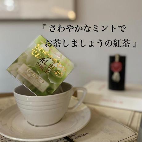 🌱David tea collection【さわやかなミント】宇治紅茶館セレクト