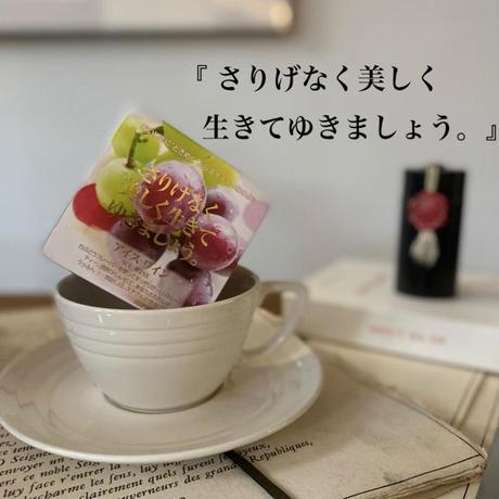 🌱 David tea collection【アイスワイン】宇治紅茶館セレクト