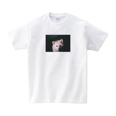 おとうさんTシャツ「キュル」