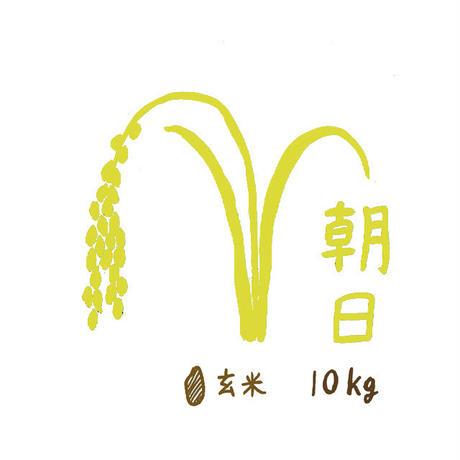 自然栽培米 朝日 玄米10kg 2019年度産