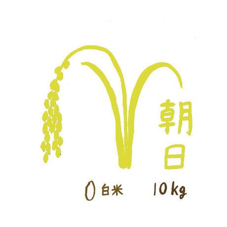 自然栽培米 朝日 白米10kg 2019年度産