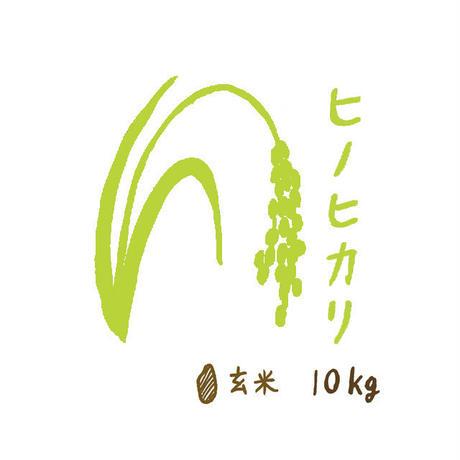 自然栽培米 ヒノヒカリ 玄米10kg 2020年度産