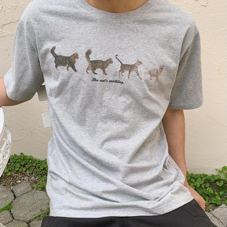 Treat cat walk T-shirts (grey)
