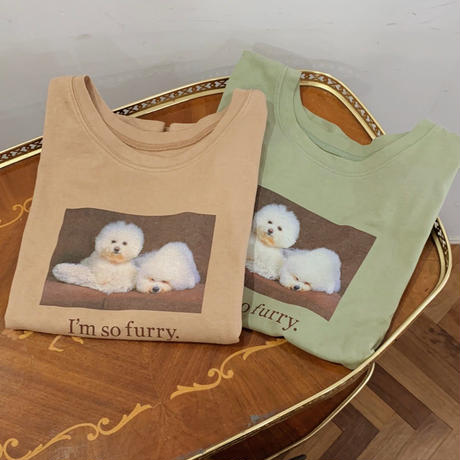 Treat puppy T-shirts (pistàcchio)