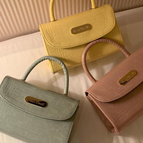 2way color croco leather bag